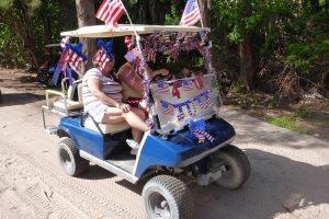 partriotic cart